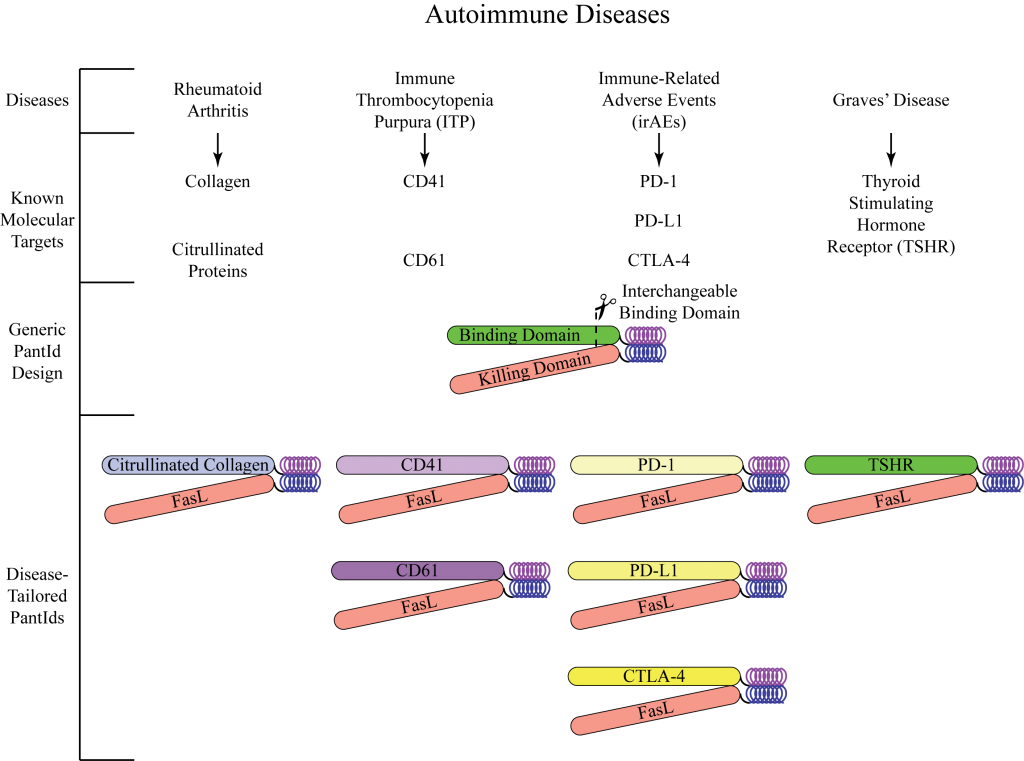 Figure 1: The Pantid® binding domain is interchangeable, allowing any autoimmune disease to be targeted.